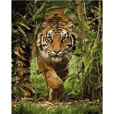 Картина раскраска Тигр на охоте Идейка KH4043 40 х 50 см