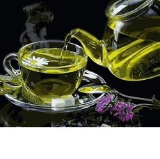 Картина раскраска Babylon Чай с чабрецом VP1135 40 х 50 см