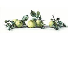B2259 Натюрморт с яблоками Набор для вышивания крестиком