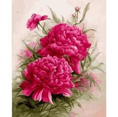 Картина раскраска Пурпурные пионы Babylon VP1140 40 х 50см