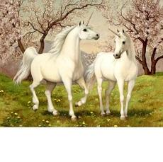 Картина по номерам Пара единорогов (KHО2431)