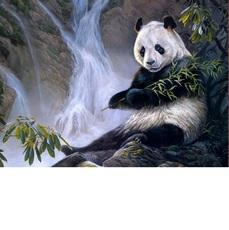 Панда с бамбуком Худ Лаура Марк-Файнберг (VP475)