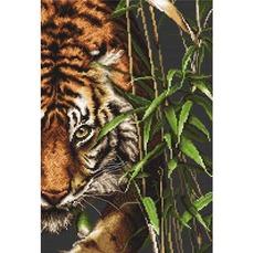 B2356 Tигр