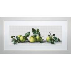 В2259 Натюрморт с яблоками. Luca-S. Набор для вышивания нитками
