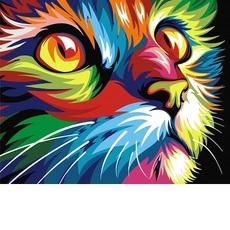 Радужный кот худ Ваю Ромдони (VK002)