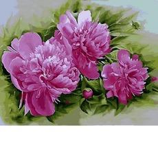 Картина по номера Розовые пионы MR-Q2184 40 х 50 см Mariposa