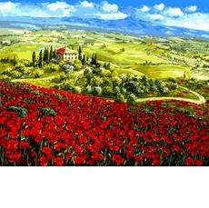 Маки Тосканы VP1062