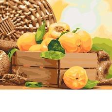 Картина раскраска Парижская карусель (Без коробки) НикиТошка  BK-GX24845 40х50см