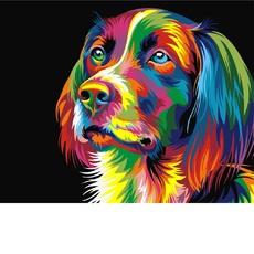 Радужный пес худ Ваю Ромдони (VK003)