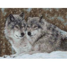 B2291 Два волка. Luca-S. Набор для вышивания нитками