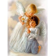 Ангельские дети худ Кук, Сандра (VP434)