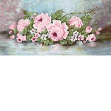 B584 Розы