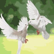 KHО4149 Картина по номерам Белые голуби Идейка