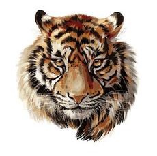 Царственный тигр VP1018
