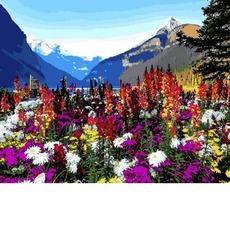 Альпийские луга VP1088
