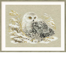 Набор для вышивания Риолис 1241 Белая сова