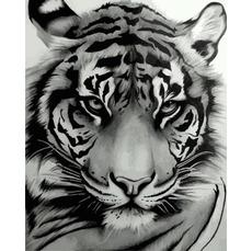 VP1194 Картина по номерам Величественный тигр DIY Babylon