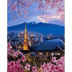 Путешествие по Японии VP1112