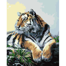 Тигр KH2460