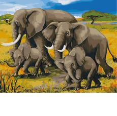 Африканский полдень KH2464