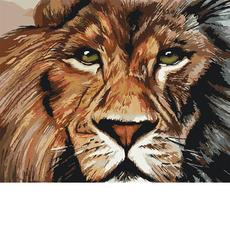 Львиный взгляд KH4024