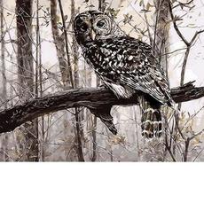 Сова в зимнем лесуХуд. Кобейн РасселMR-Q639
