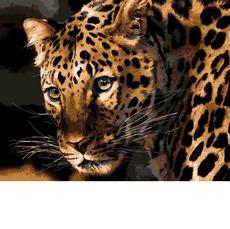 Настороженный леопард MR-Q694