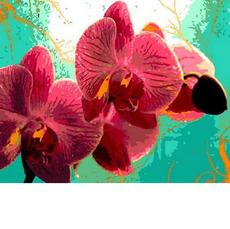 Тропическая орхидеяMR-Q766