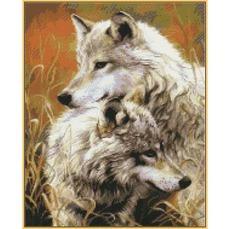 Степные волки ST034