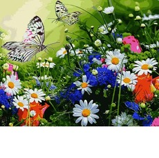 VP1254 Раскраски по номерам Цветочное поле и бабочки Babylon