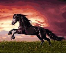 VP1257 Картина по номерам Прыжок лошади Babylon