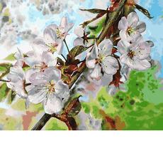 VP1313 Картина по номерам Цвет вишни Babylon