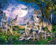 VP1357 Раскраска по номерам Стая волков Babylon