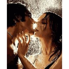 VP1373 Картина по номерам Поцелуй во время летнего дождя Babylon