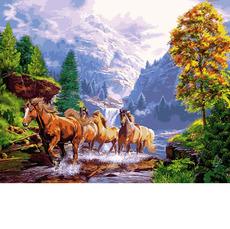 Лошади на берегу горного озера VP924